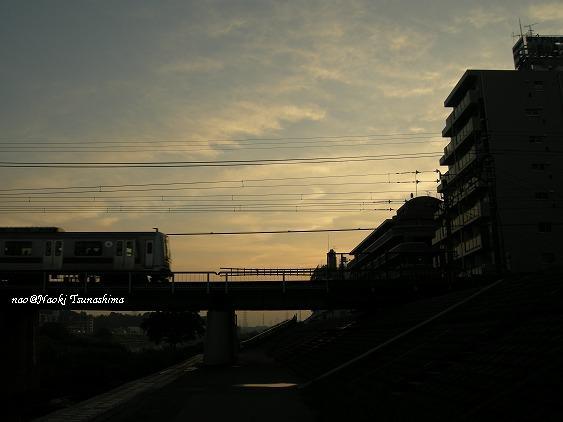 DSCN6915.jpg